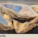Oyster-shells